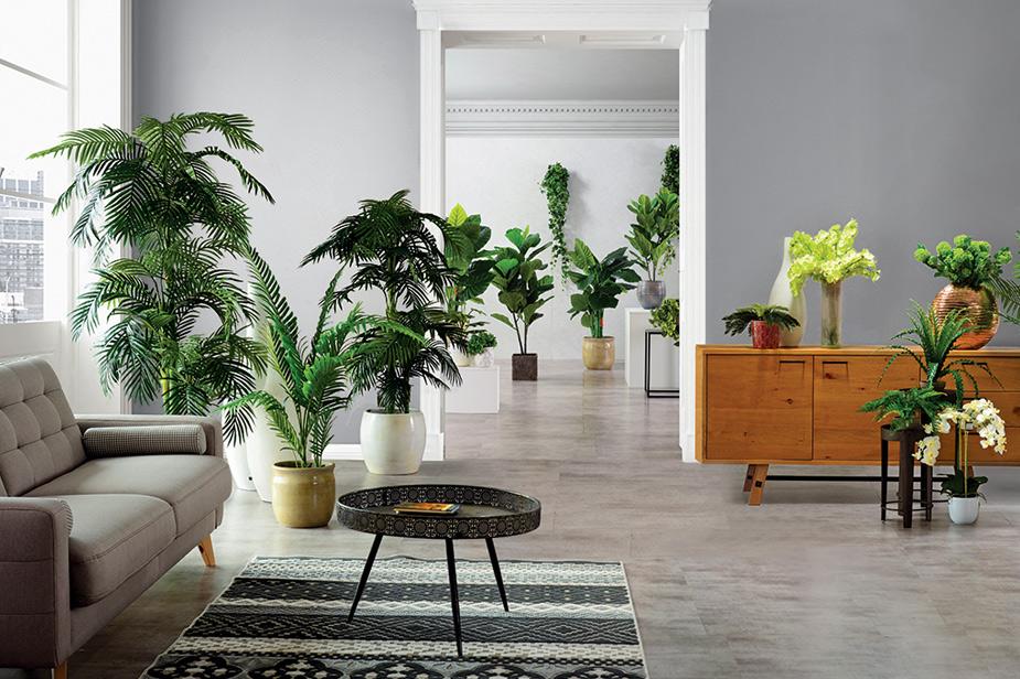 Urbana oaza dnevna soba z zelenjem