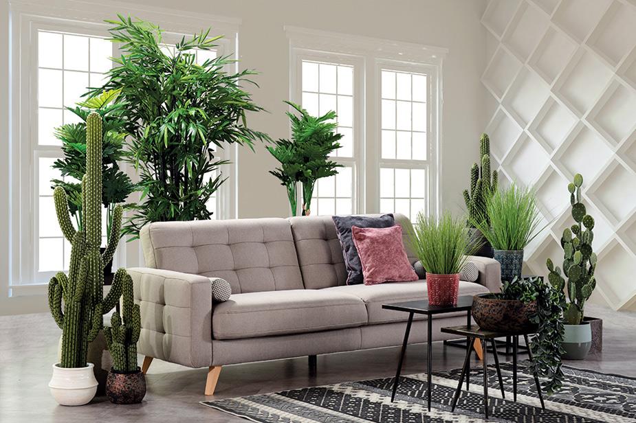 Urbana oaza okoli kavča